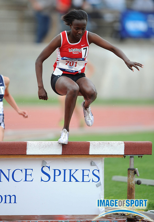 May 24, 2008; Walnut, CA, USA; Sheila Salil of Western of Western State was third in the women's steeplechase in 10:34.40 in the NCAA Division II Track & Field Championships at Mt. San Antonio College's Hilmer Lodge Stadium.