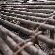Cambodia has one of the worst deforestation rates in the world. Since 1970, Cambodia's primary rainforest cover went from over 70 percent in 1970 to 3.1 percent today. Worse, Cambodia's deforestation has been accelerating over the past decade, largely a product of industrial plantation expansion, logging, and conversion for agriculture. Wildlife Alliance, in partnership with the Royal Government of Cambodia, operates six ranger stations, and supports several others in the area. Their assiduous work has made the Southern Cardamoms the best protected rainforest in Southeast Asia. Each of the stations is manned by twelve forest rangers and two Wildlife Alliance advisors. They conduct daily patrols by foot and motorbike through the forest, by boat along the many rivers running through the Southern Cardamoms removing snares, confiscate illegal timber and chainsaws, saw poachers camps, halt illegal land encroachment, and rescue captured wildlife.
