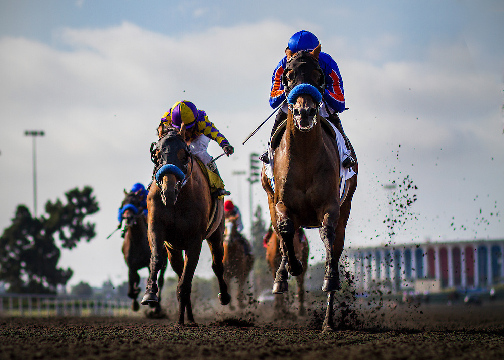 Game On Dude with Mike Smith up wins back-to-back Hollywood Gold Cups at Betfair Hollywood Park in Inglewood, CA on July 6, 2013. (Alex Evers/ Eclipse Sportswire)