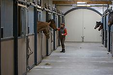 IPS Belgium 2009