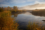 Early morning on the Yampa River near Steamboat Springs, Colorado.