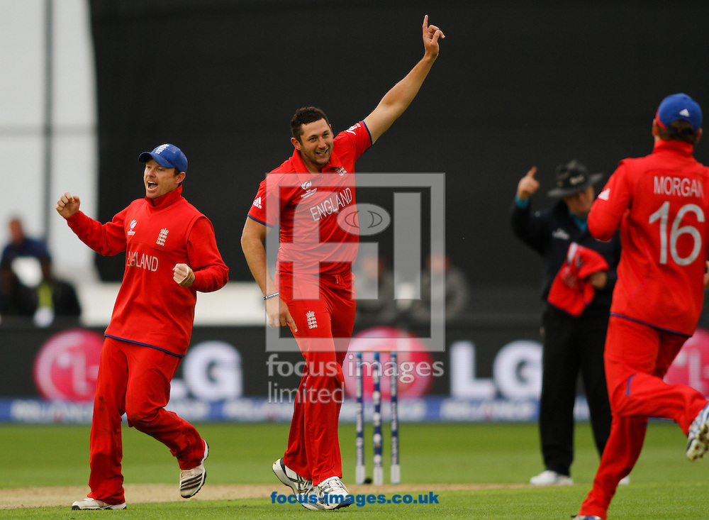 Picture by Tom Smith/Focus Images Ltd 07545141164<br /> 16/06/2013<br /> Tim Bresnan (centre) of England celebrates removing Ross Taylor   of New Zealand during the ICC Champions Trophy match at the SWALEC Stadium, Cardiff.