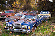 Ford auto limo in graveyard of abandoned rusty old American automobiles in MIssissippi, USA