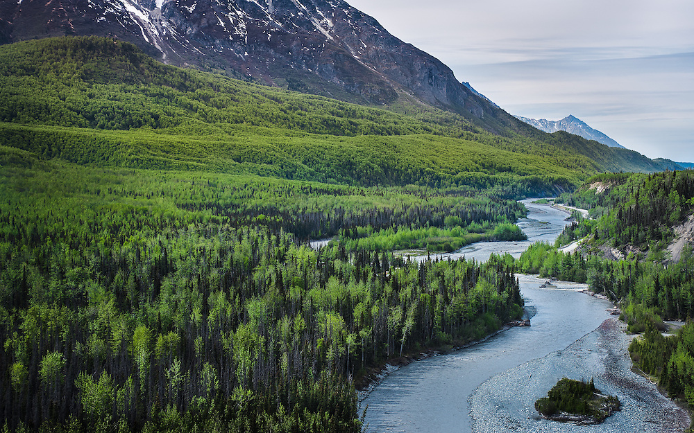 I had never been impressed by Spring until I was in Alaska. Spring there brings forth the many shades of green in the vegetation and I was really captured by that. This image was taken along the Alaskan Glen Highway overlooking the Matanuska-Susitna Valley and was a play on Ansel Adams's Snake River Overlook.