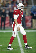 Arizona Cardinals quarterback Carson Palmer (3) calls out from the shotgun formation during the NFL NFC Divisional round playoff football game against the Green Bay Packers on Saturday, Jan. 16, 2016 in Glendale, Ariz. The Cardinals won the game in overtime 26-20. (©Paul Anthony Spinelli)