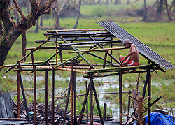 26/11/2013.  A villager on the outskirts of Tacloban rebuilds his home more than 2 weeks after a super typhoon destroyed the city in the Phiippines.  Photo credit: Alison Baskerville/LNP
