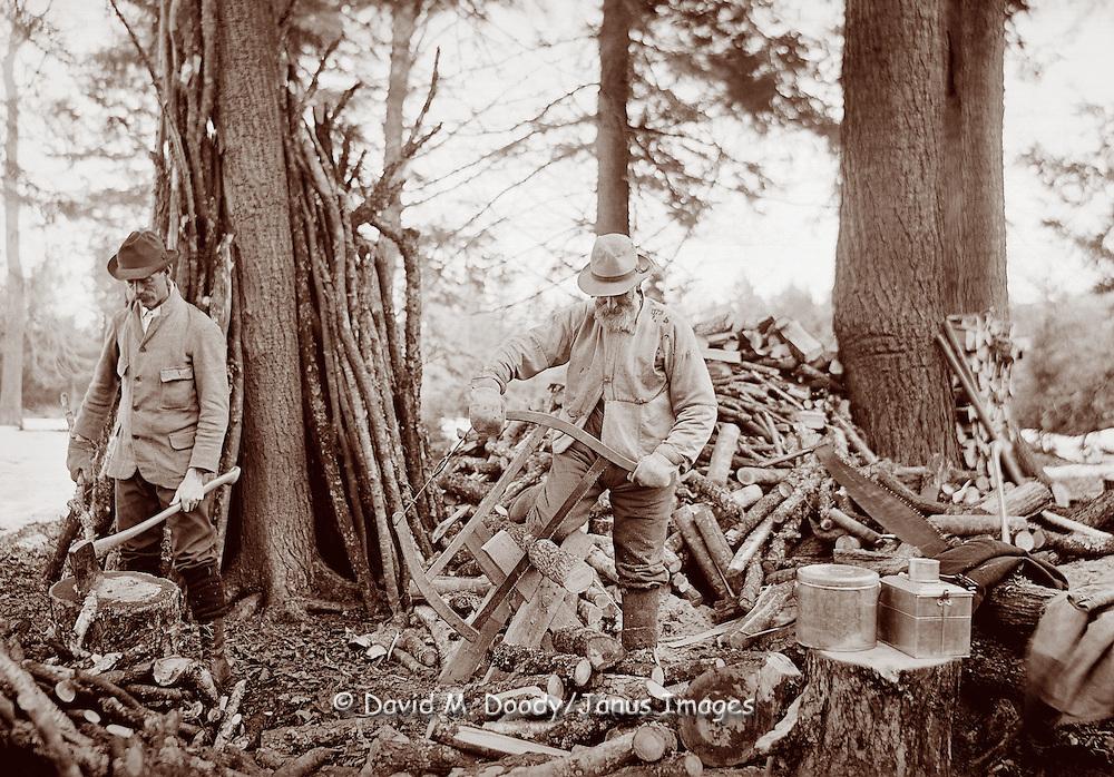 Men cutting wood, 1902