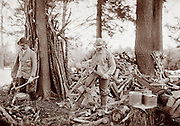 Men cutting wood, 1902