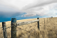 Barbed wire fence in Montana.