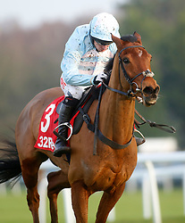 Summerville Boy and Noel Fehily pull away from the last flight to go on and win The 32Red Tolworth Novices' Hurdle Race run during 32Red Day at Sandown Park, Sandown.