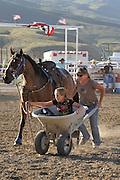 Wheelbarrow Race, Rodeo, Salmon, Idaho