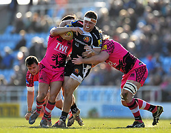 Sam Hill of Exeter Chiefs takes on the London Welsh defence - Photo mandatory by-line: Patrick Khachfe/JMP - Mobile: 07966 386802 07/03/2015 - SPORT - RUGBY UNION - Exeter - Sandy Park - Exeter Chiefs v London Welsh - Aviva Premiership