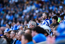 Brighton & Hove Albion fans watch on in silence - Mandatory by-line: Jason Brown/JMP - 29/04/2017 - FOOTBALL - Amex Stadium - Brighton, England - Brighton and Hove Albion v Bristol City - Sky Bet Championship