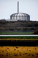 PETTEN - De kernreactor in Petten is in 2013 stilgelegd omdat het te onveilig was. Een aantal medewerkers overtraden de veiligheidsregels.  COPYRIGHT ROBIN UTRECHT