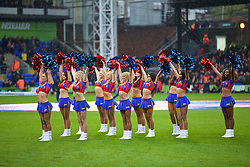 LONDON, ENGLAND - Sunday, November 23, 2014: Crystal Palace's cheerleaders The Crystals before the Premier League match against Liverpool at Selhurst Park. (Pic by David Rawcliffe/Propaganda)