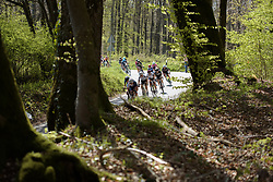 Leaders sweep around the bend and into the trees on Stage 2 of Festival Elsy Jacobs 2017. A 111.1 km road race on April 30th 2017, starting and finishing in Garnich, Luxembourg. (Photo by Sean Robinson/Velofocus)
