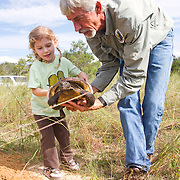 Nokuse Plantation employee Bob Walker and Violet Carr release a gopher tortoise at the Nokuse Plantation the day after it was removed from a Tarpon Springs soon to be developed subdivision the day before.