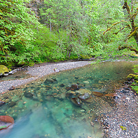 Beautiful blue Santiam River runs amongst moss covered trees the Willamette National Forest, near Cascadia, Oregon.