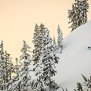 Owen Dudley makes some high speed powder turns on Mount Herman in the Mount Baker backcountry,
