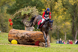 De Cleene Wouter, BEL, Magic Dream van't Hulsbos<br /> Mondial du Lion - Le Lion d'Angers 2019<br /> © Hippo Foto - Dirk Caremans<br />  19/10/2019