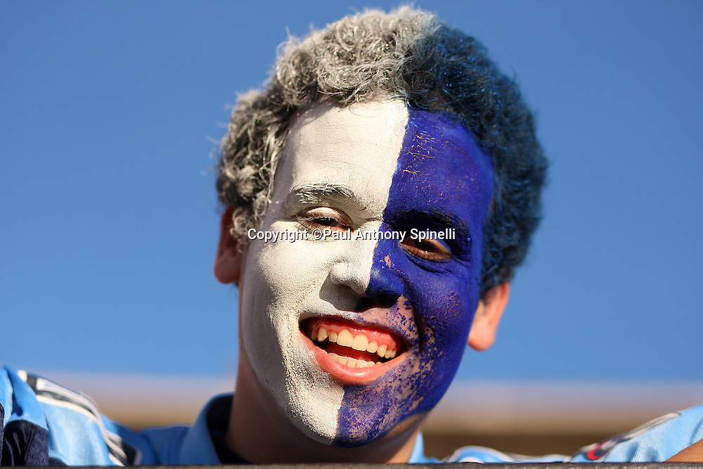 A Tennessee Titans fan with a painted face smiles during the NFL football game against the San Francisco 49ers, November 8, 2009 in San Francisco, California. The Titans won the game 34-27. (©Paul Anthony Spinelli)