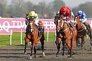 Kempton Races 010414