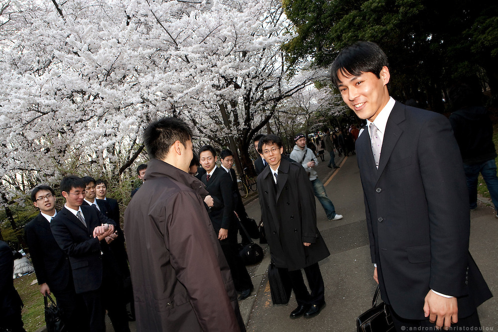 """Salarymen"" (office employees), enjoying the cherry blossoms in Yoyogi park. .Every spring during the few weeks of cherry blossoms, japanese people enjoy the beauty of cherry-tree flowers by having small parties or walks in the parks and other locations where these trees blossom."
