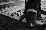 French guiana, ipoussing.<br /> <br /> Exploitation aurifere. Garimpeiro. Les favelas de certaines villes bresiliennes (Macapa, Belem ou Manaus entre autre) constituent un reservoir de main d&rsquo;oeuvre peu exigeante de ses conditions de travail pour les chantiers guyanais. Les hommes sont payes au pourcentage et peuvent passer plusieurs mois sans sortir de foret. Ils sont rompus a ce mode de vie et travaillent indifferement pour des employeurs officiels ou clandestins.