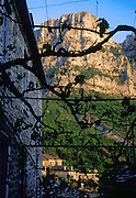 See Mount Astraka (7990 feet) and the Tymfi Massif through grape arbor, in Mikro Papingo village (or small Papigo, Greek: ), in the north Pindus Mountains (Pindos or Pindhos), Epirus/Epiros, Greece, Europe. Zagori (Greek: ) is a region and a municipality in the Pindus mountains in Epirus, in northwestern Greece. Zagori contains 45 villages collectively known as Zagoria (Zagorochoria or Zagorohoria). The northeast wall of Vikos Gorge is Mount Tymfi (or Greek: , also transliterated Mt Timfi, Tymphe, or Tymphi), near the 40 degree parallel. Tymfi forms a massif with its highest peak, Gamila, at 2497 meters (8192 feet), the sixth highest in Greece.