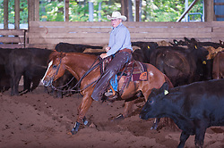 September 23, 2017 - Minshall Farm Cutting 5, held at Minshall Farms, Hillsburgh Ontario. The event was put on by the Ontario Cutting Horse Association. Riding in the Non-Pro Class is John Koop on Head Cat owned by the rider.