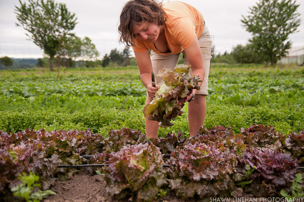 Young woman in the field of Dancing Roots Farm in Troutdale, Oregon.