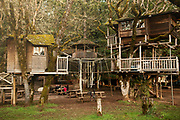 Out 'N' About Tree house in the Illinois Valley, Oregon
