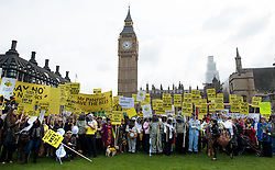 © Licensed to London News Pictures. 26/04/2013. London, UK. Beekeepers from Britain's 12 leading campaigning groups stage a demonstration in Parliament Square, London on April 26, 2013. Over 100 beekeepers  from across the UK march on Parliament in opposition to the Government's plan to oppose a ban on bee killing pesticides in a crucial EU vote on Monday. Photo credit : Peter Kollanyi/LNP