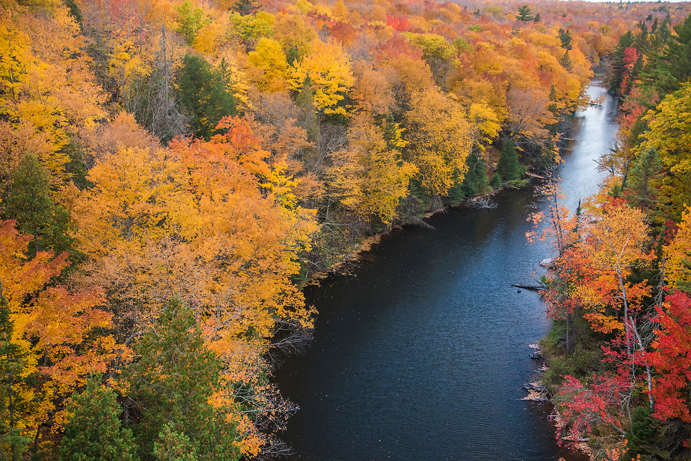 Fall color along the Dead River on County Road 510 near Marquette, Michigan.