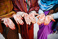 A brightly colored group of Indian women display their henna tattoos in Bikaner, Rajasthan, India.