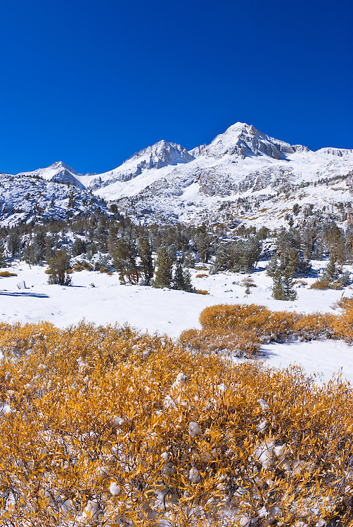 Fresh snow on Mount Abbot and Little Lakes Valley, John Muir Wilderness, Sierra Nevada Mountains, California