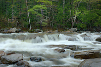 Swift River in the White Mountains of New Hampshire USA