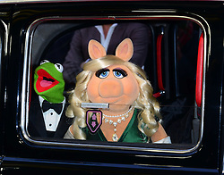 Kermit The Frog and Miss Piggy  attends Muppets Most Wanted VIP film screening of sequel to last year's comedy, which sees the return of the Muppets as they embark on a global tour, getting caught up in an international crime caper at Curzon Mayfair, London, United Kingdom. Monday, 24th March 2014. Picture by Nils Jorgensen / i-Images