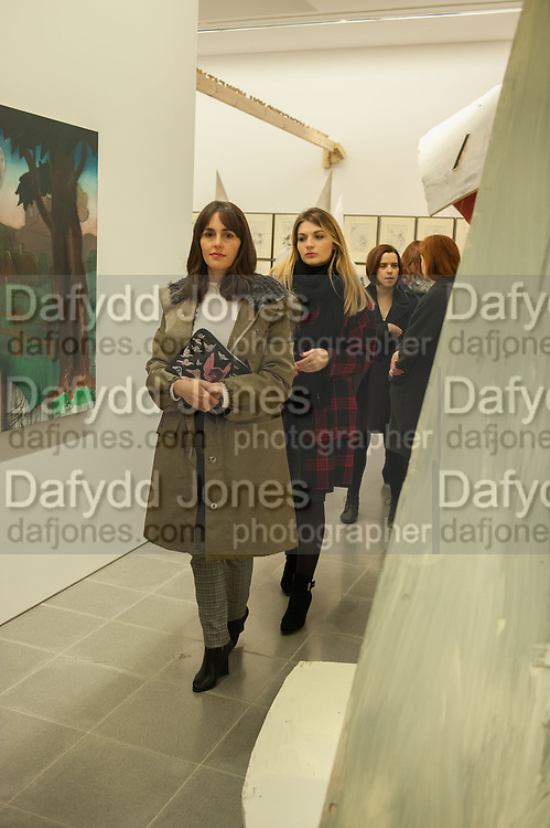 TANIA FARES, Come and See, Jake and Dinos Chapman, Serpentine Sackler Gallery. Serpentine Galleries Special Private View, 29 November 2013