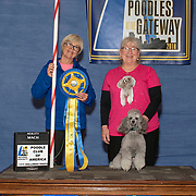 Poodle Club of America 2018