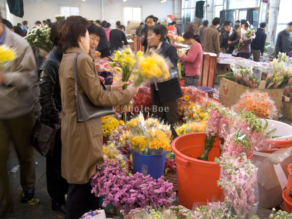 indoor flower market Beijing China