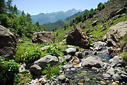 Clear and fresh waters flowing in alpine torrents of Aosta valley, Italy.
