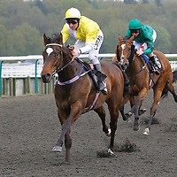 Willies Wonder and Michael Hills winning the 2.00 race