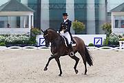 Patrick Kittel - Toy Story<br /> World Equestrian Festival, CHIO Aachen 2012<br /> © DigiShots
