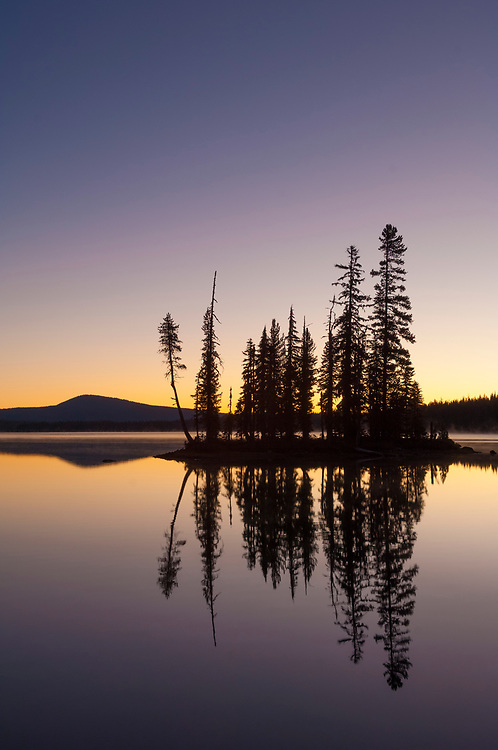 Forested island in Summit Lake at dawn, Deschutes National Forest, Oregon.