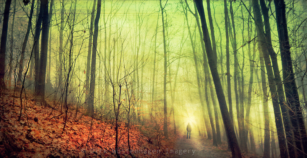 Man standing on a forest path on a foggy winter day.<br />