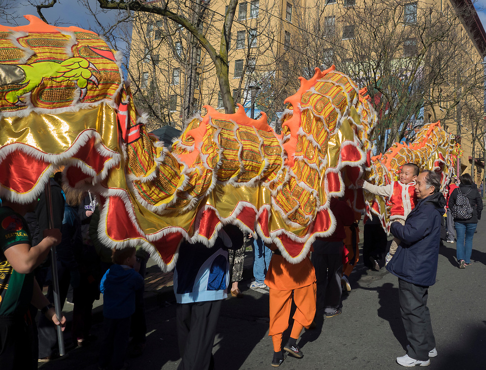 """United States, Washington, Seattle. Chinese Lunar New Year celebration in Seattle's """"International District"""", traditional home of the city's Asian community. Young child encounters lion dancers."""