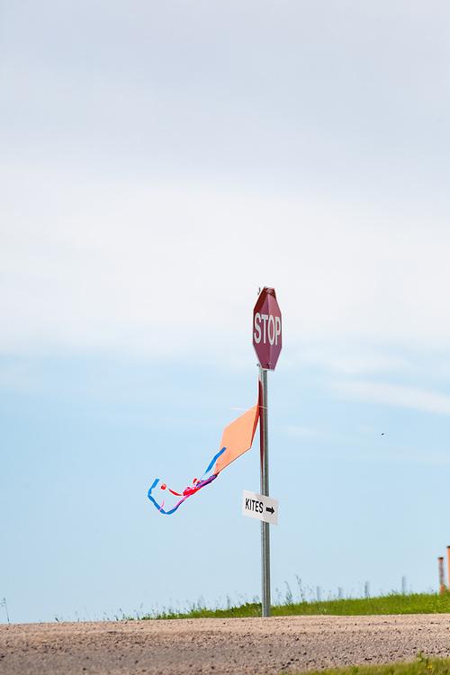 "Just follow the ""kite"" signs to the kite festival. Windscape Kite Festival, Swift Current, Saskatchewan."