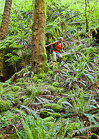 An athletic woman scrambling down a rocky moss covered slope, Little Si, Washington, USA.
