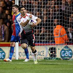 Crystal Palace v Liverpool   Premiership   5 May 2014